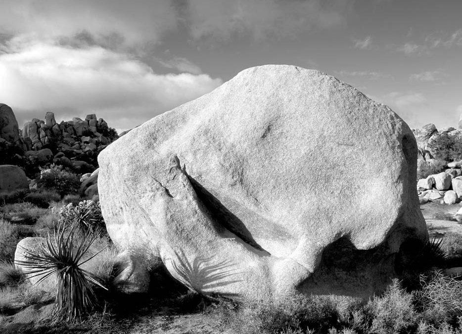 Pedra do meio do caminho