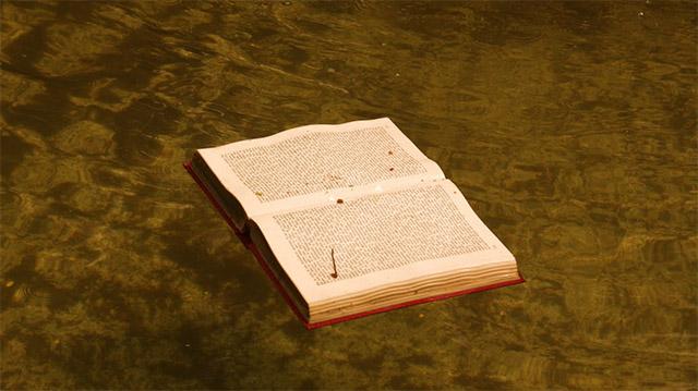 Lirismo até em cima d'água